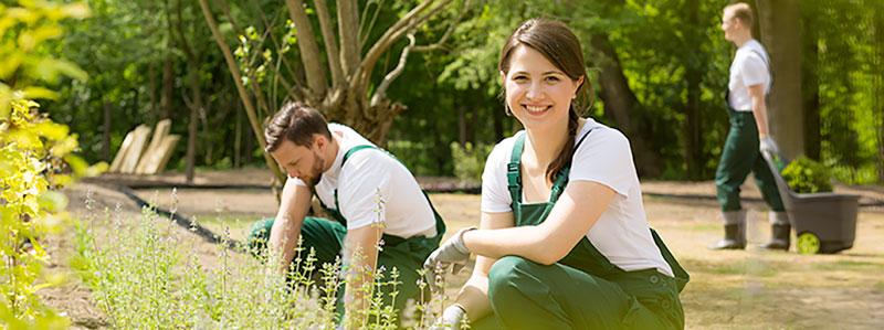 jardinier à domicile