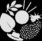 cmonjardinier - portail jardinier