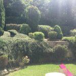 L'entretien et la remise au propre d'un jardin paysagé à Chennevières sur Marne