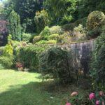 Remise au propre d'un jardin paysagé