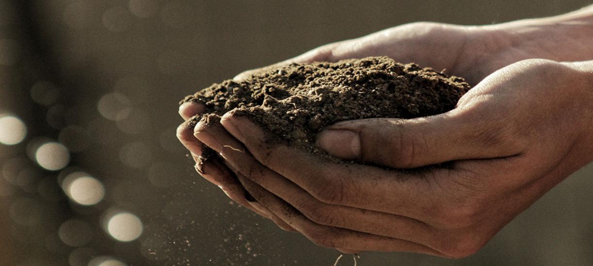 Cmonjardinier vous explique la différence entre compost et vermicompost.