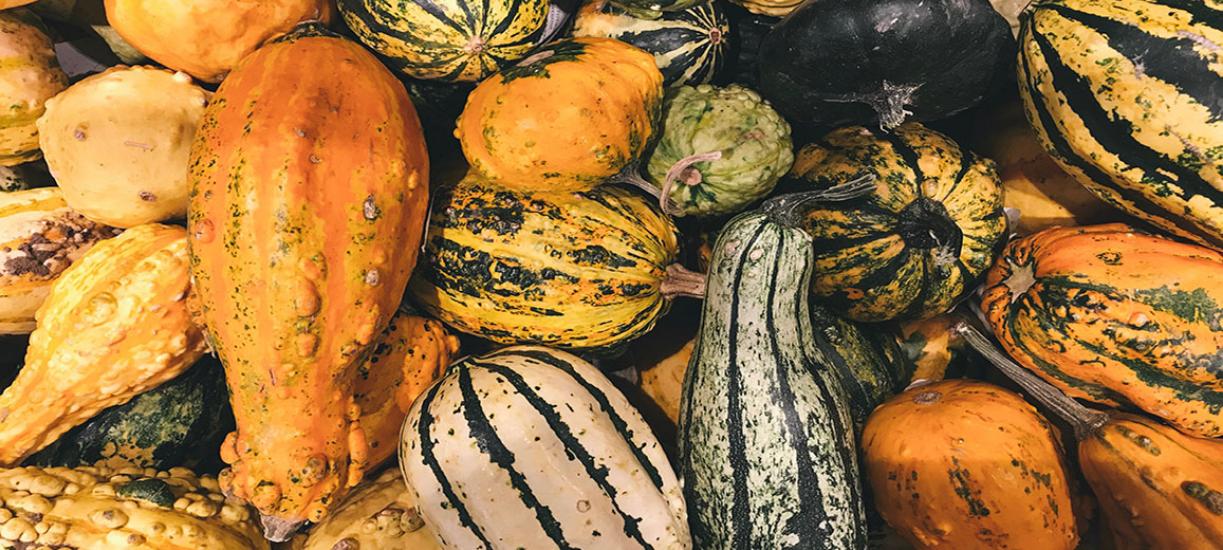 Savez-vous quels fruits et légumes récolter en automne?