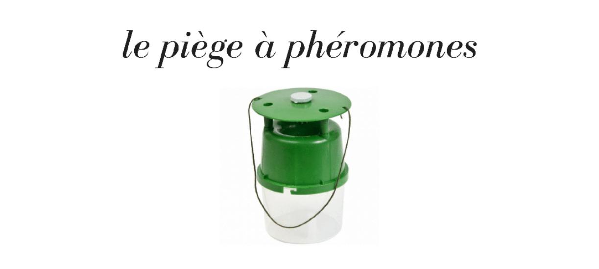 Pourquoi utiliser un piège à phéronomes ?