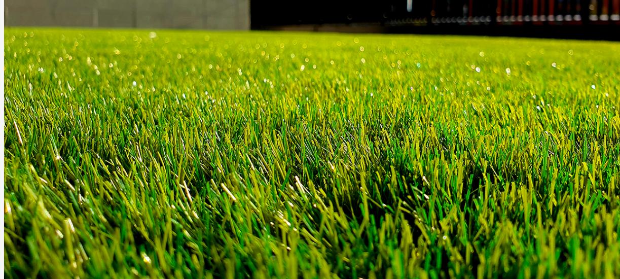 L'entretien de la pelouse au printemps.