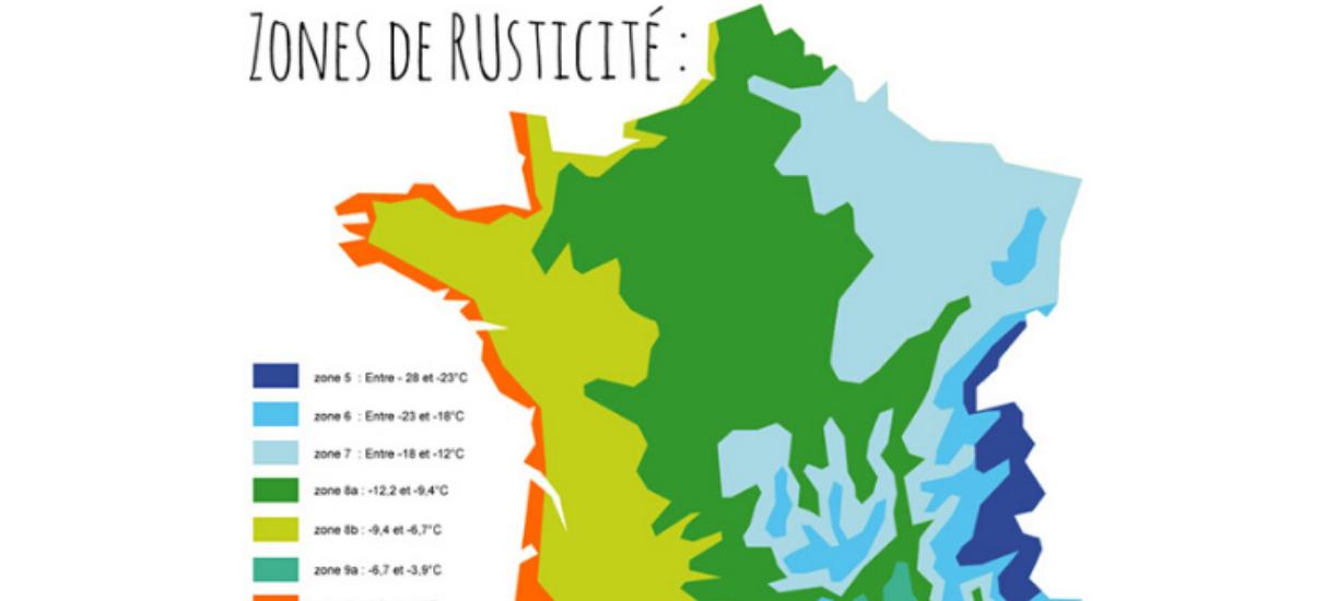 Savez-vous ce qu'est la carte USDA France ? Cmonjardinier vous dit tout sur la carte de rusticité !