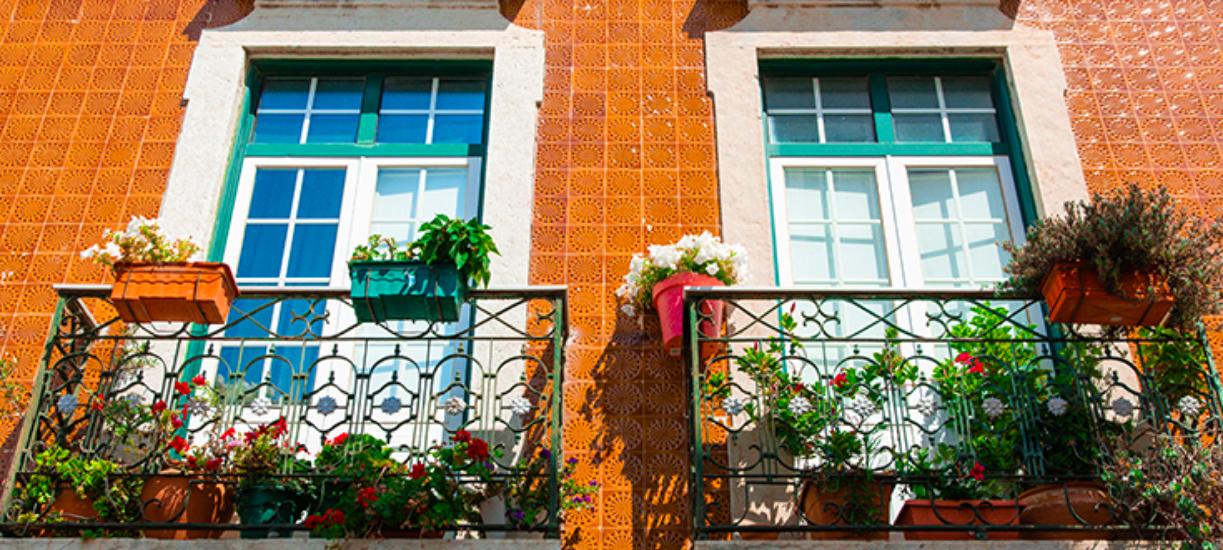 Cmonjardinier a fait pour vous une sélection de plantes à mettre sur le balcon si vous habitez en ville. N'hésitez pas à suivre nos conseils !