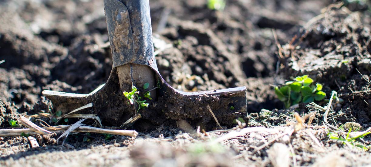 Créer une entreprise de paysagiste avec Cmonjardinier