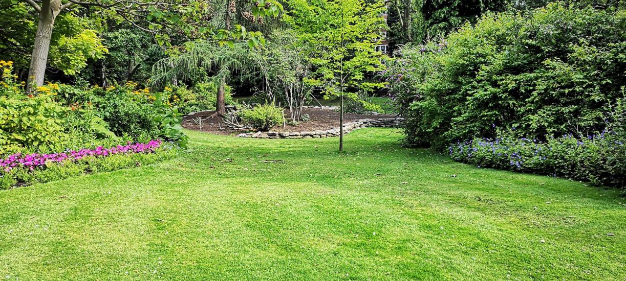 Cmonjardinier vous explique comment préparer son jardin Avant son départ en vacances.