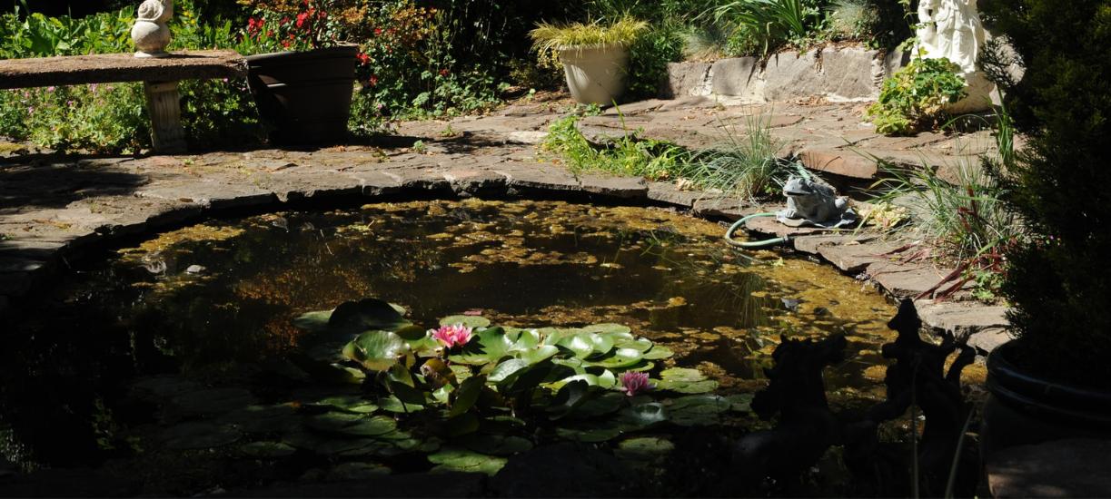 Cmonjardinier vous fait une sélection d'équipement de bassin de jardin.