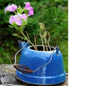 Pots de fleurs originaux et insolites en théière