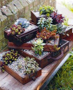 Pots de fleurs en tiroirs
