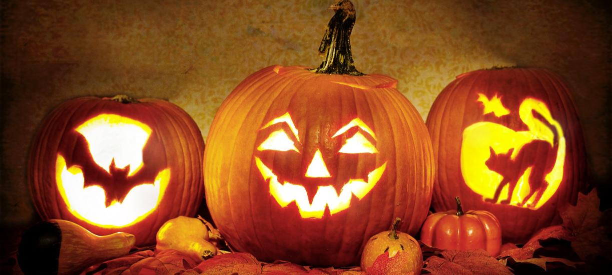 Des citrouilles de décoration pour Halloween